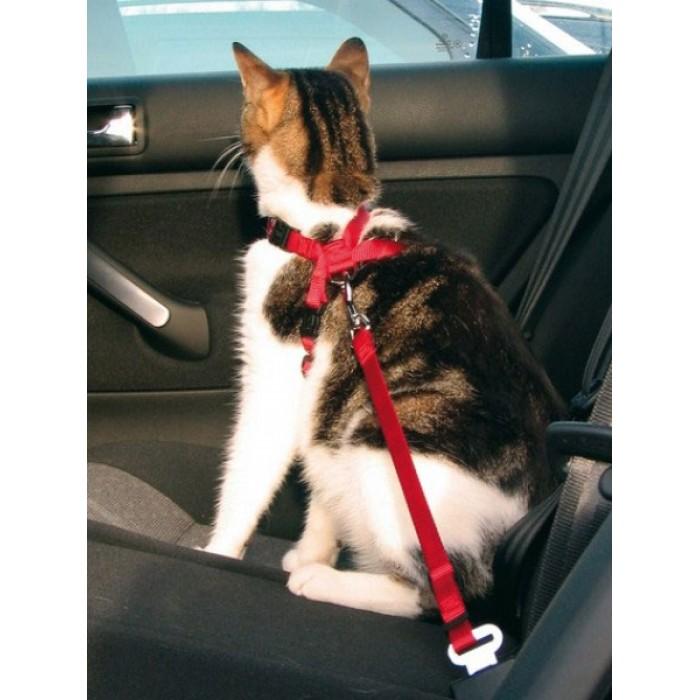 Автомобильная шлея с ремнем безопасности для кошек Trixie 1294