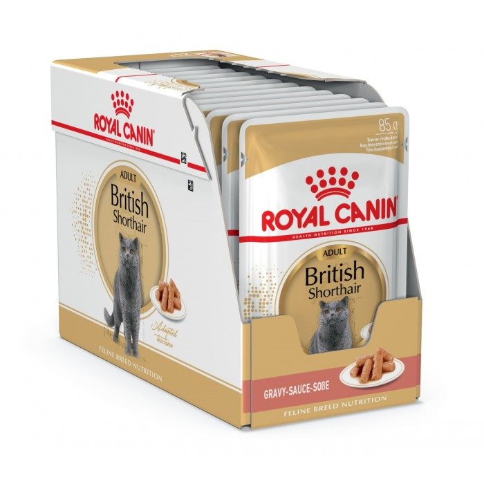 Royal Canin British Shorthair Adult консервы 12шт