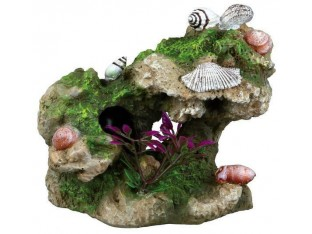 Декорация в аквариум Скала с ракушками Trixie 87809 11см