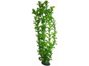 Растение для аквариума 46см 4676