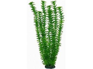Растение для аквариума 46см 4686