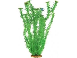 Растение для аквариума 55см 5568