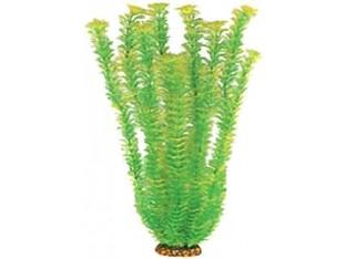 Растение для аквариума 55см 5573