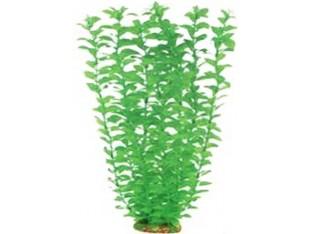 Растение для аквариума 55см 5576