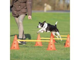 Набор препятствий для собак Trixie 32091