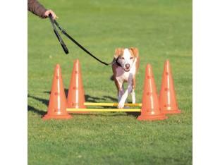 Набор препятствий для собак Trixie 32092