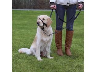 Учебная петля для собак Trixie 13002 35-42см/22см/S